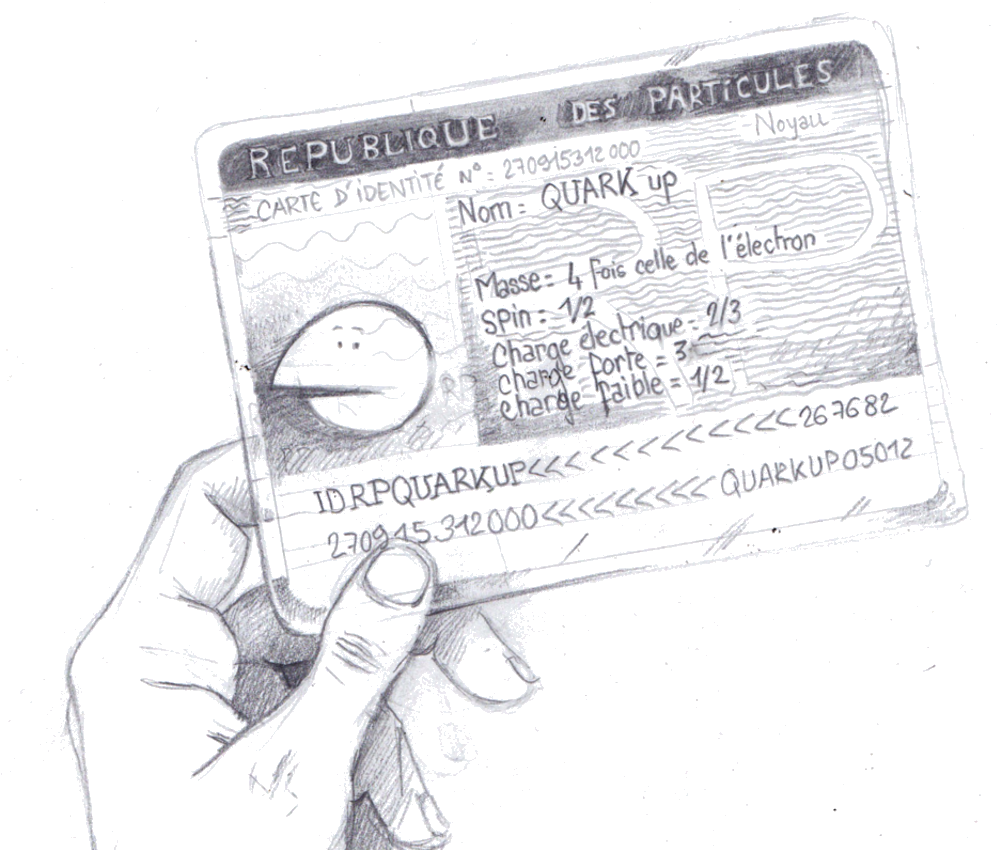 Illustration of a particle ID card, for the book Sur La Route du Boson